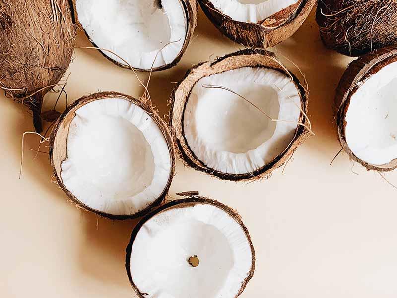 האם שמן קוקוס באמת עוזר לצמיחת הריסים